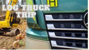 Log Truck image